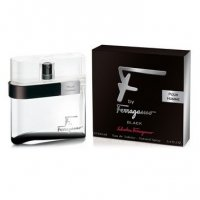 Salvatore Ferragamo F By Black